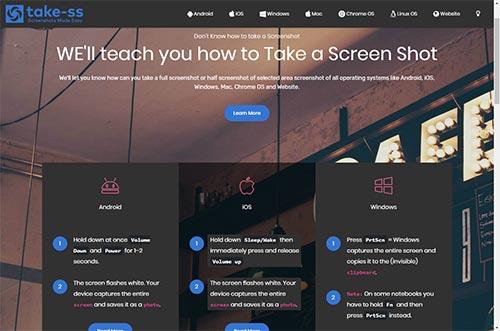 How To Take Screenshot Of Website webpage